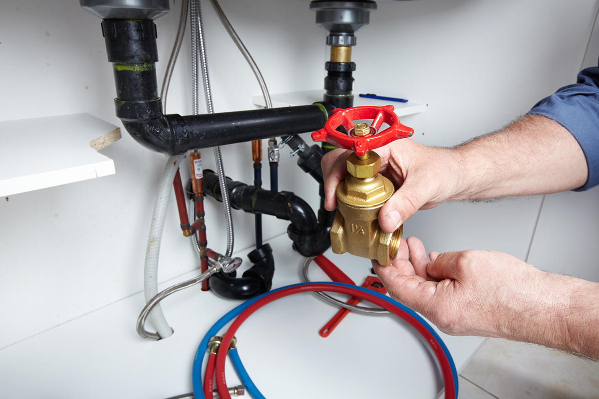 plumber in Anthem, Arizona fixing a commercial plumbing problem