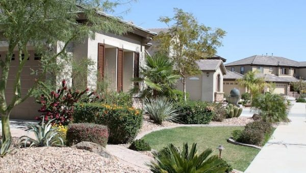 water saving landscape at an Arizona home
